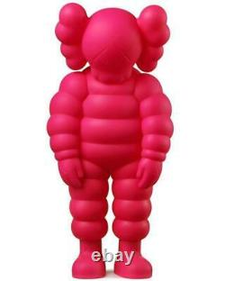 KAWS What Party Vinyl Figure PINK In Hands Ready to Ship