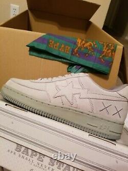 Kaws Bapesta brand new size 10.5 no box