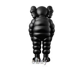 Kaws What Party Black CONFIRMED ORDER BRAND NEW