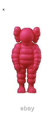 Kaws What Party Pink IN HAND Authentic New
